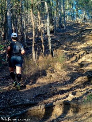 Personalised run training in Brisbane