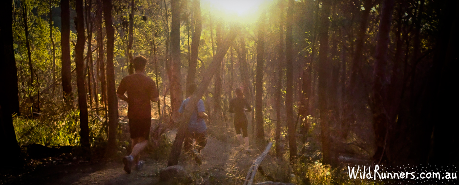 Wild Runners - Trail Run Coaching