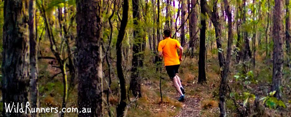 Newsletter November 2014 - Trail Run Training